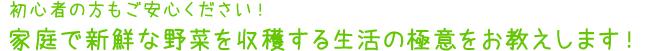 kateisaien_03_gokui