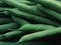 実を食べる野菜