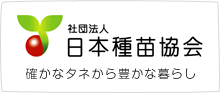 タキイ交配 耐病ひかり蕪(カブ)